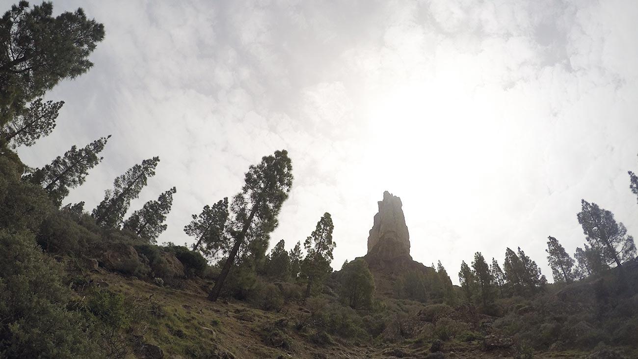 Auf dem Weg zum Gipfel: Der schönste Teil des Transgrancanaria 2015.
