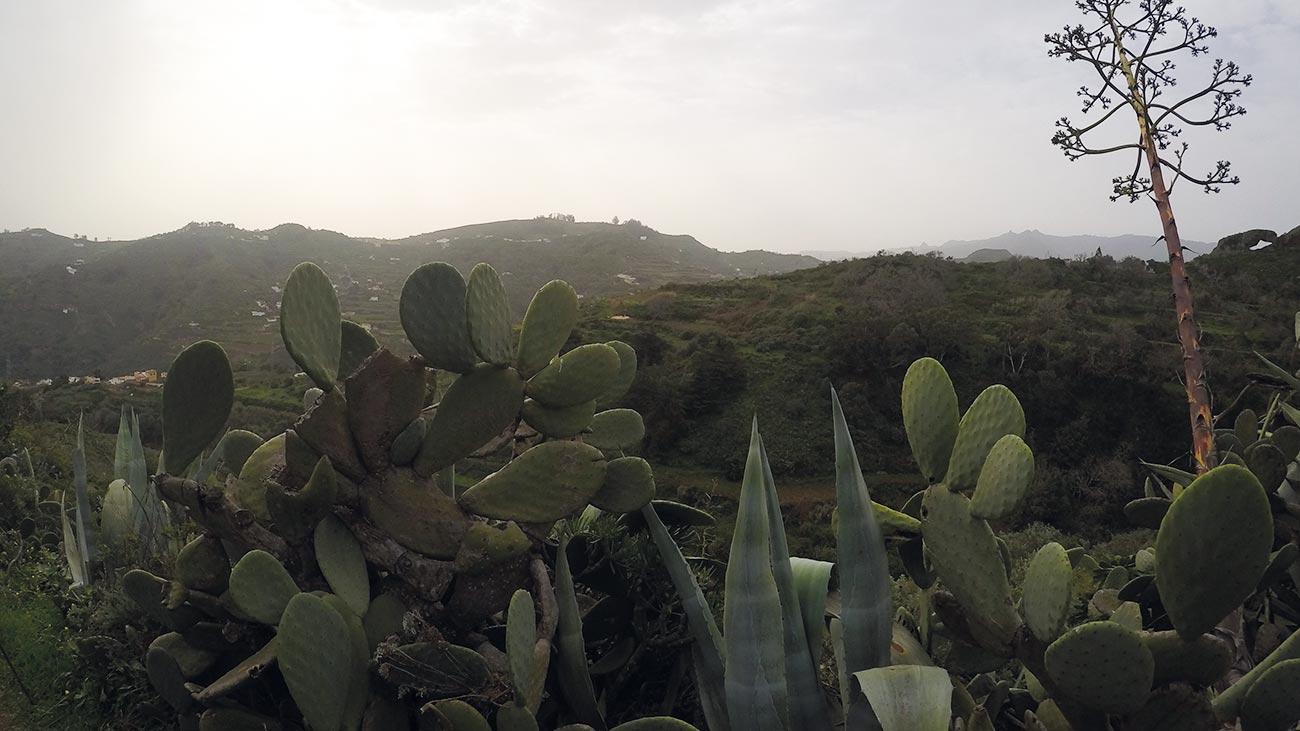 Beeindruckende Natur und Landschaft auf Gran Canaria.