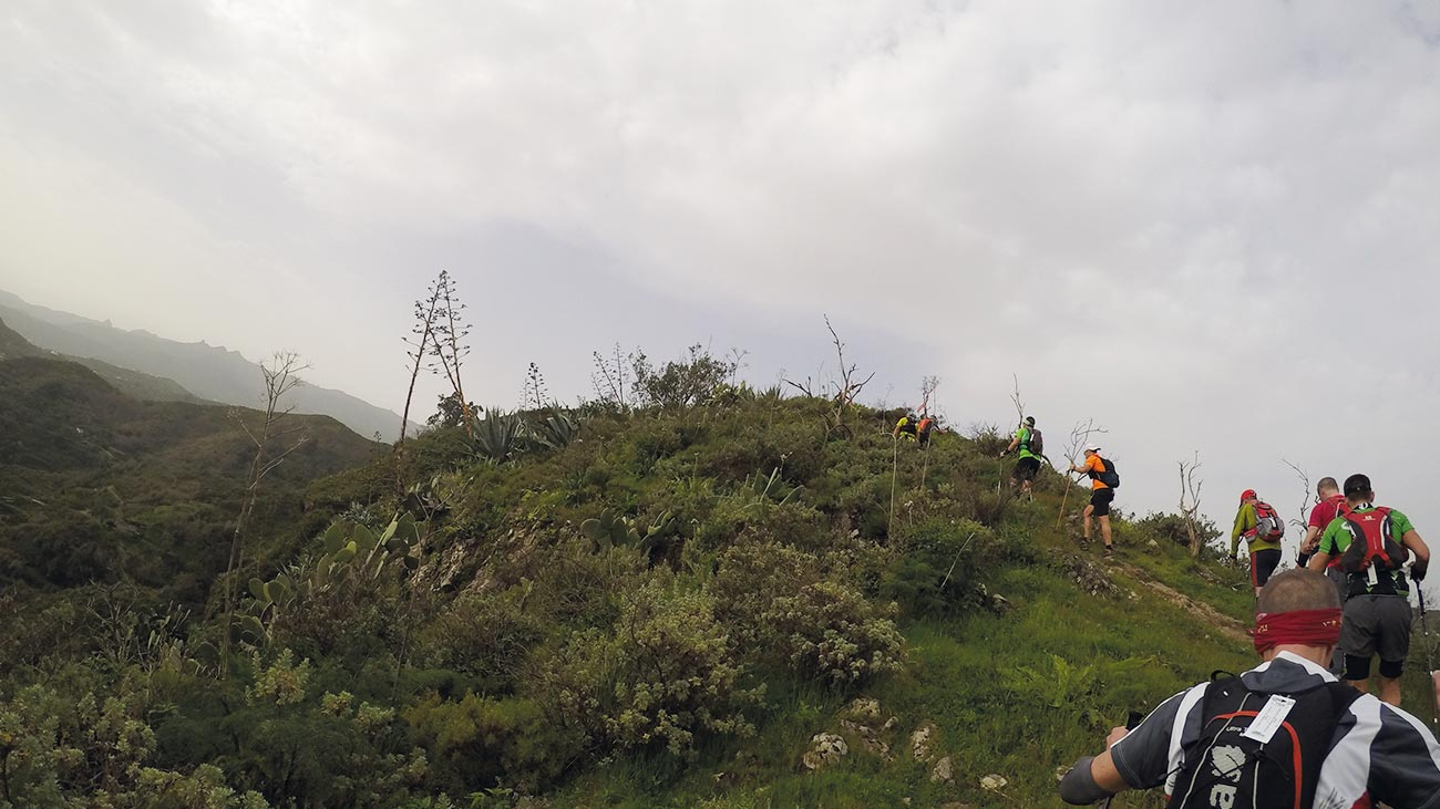 Single Trail beim Transgrancanaria