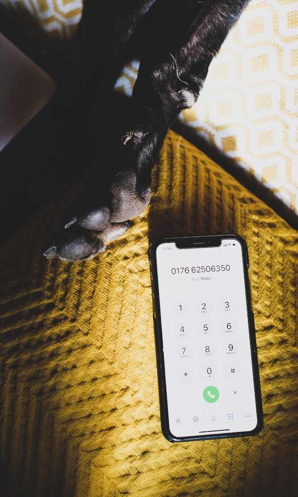dogemy: Kontakt per Telefon