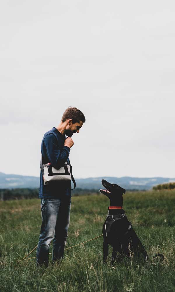 Gewaltfreies Hundetraining
