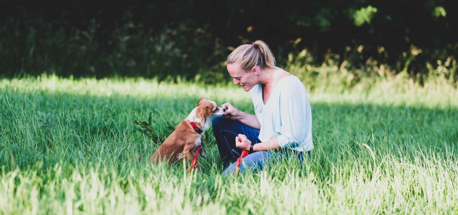 Tiergestützte Therapie im Odenwald