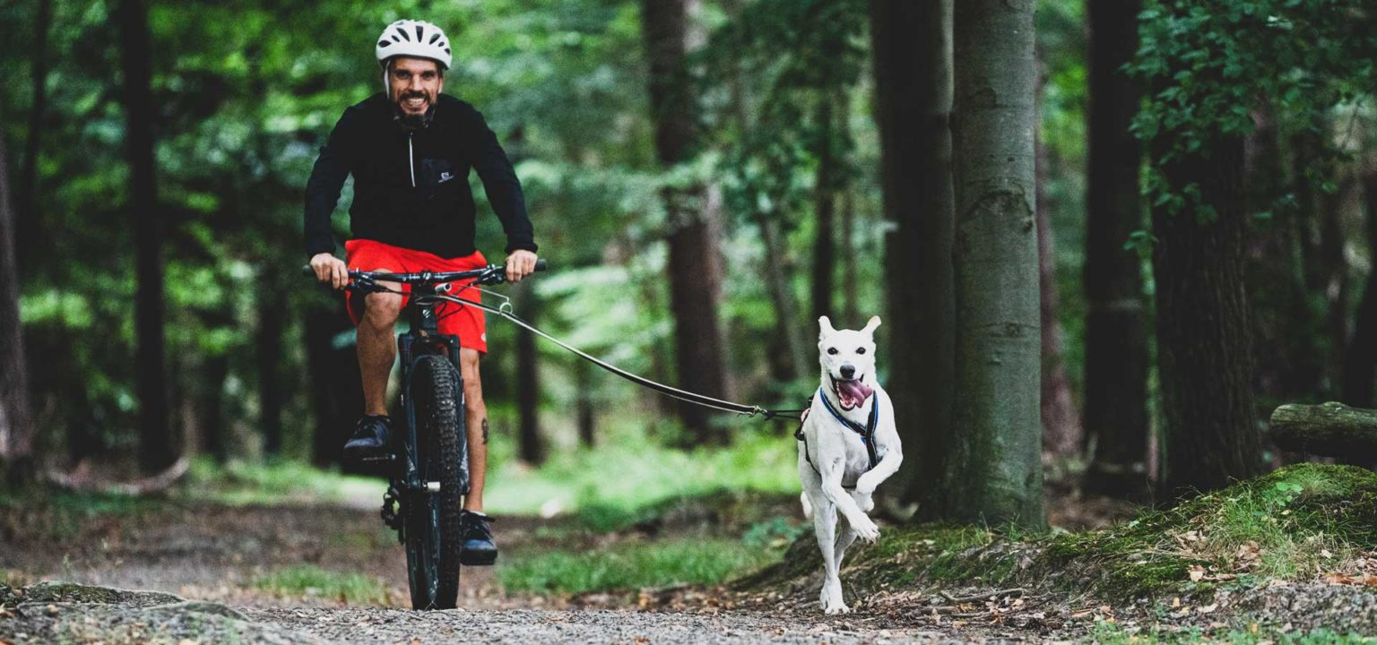 Zughundesport Bikejöring