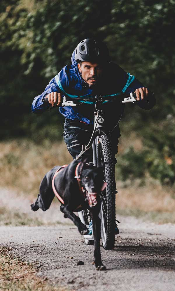 Zughundesport Dogscooter